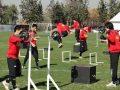 el entrenamiento de la fuerza